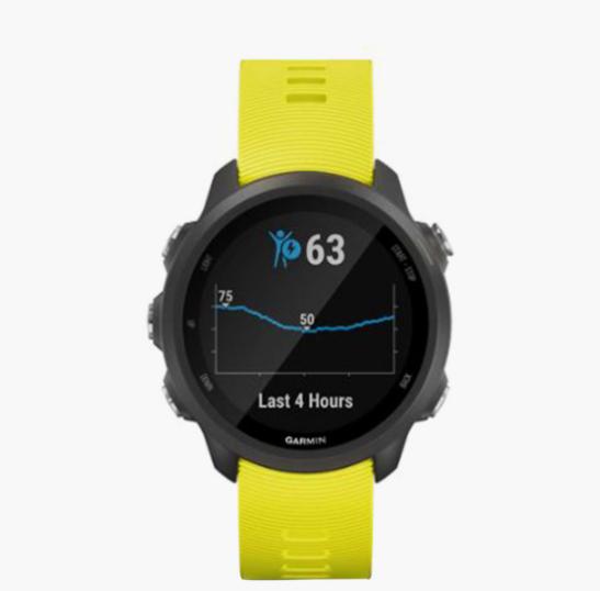 GARMIN Forerunner 245 Unisex Smart Watch - WGA-010-02120-4A
